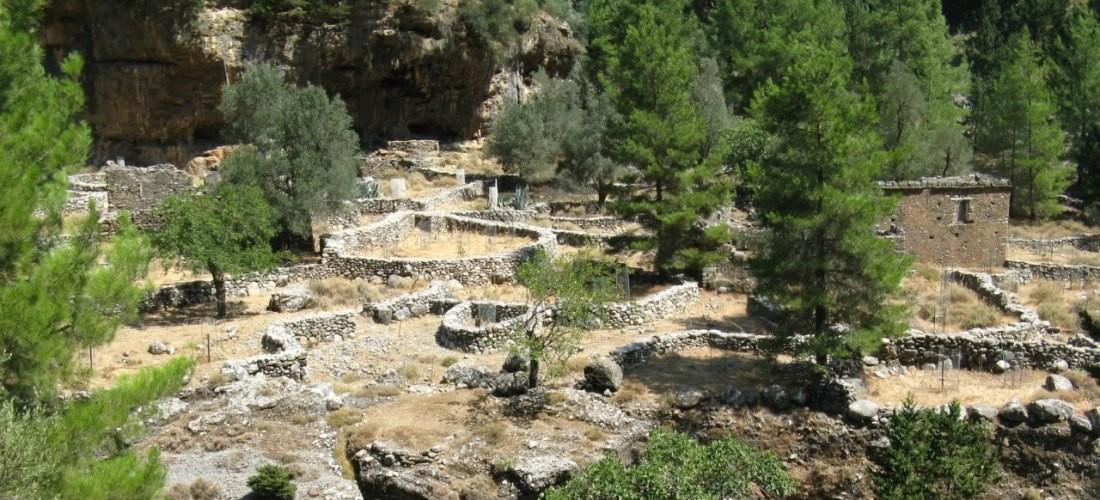 Samaria Gorge Analipsi Tours